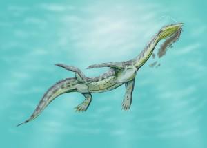 800px-Ceresiosaurus12